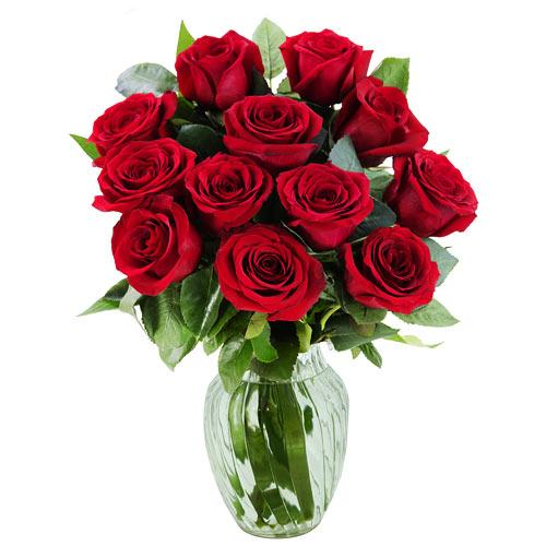 Lovely Bouquet of 15 Red Roses