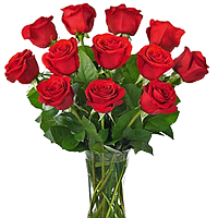 Mind Blowing Bouquet of 12 Red Roses with Vase