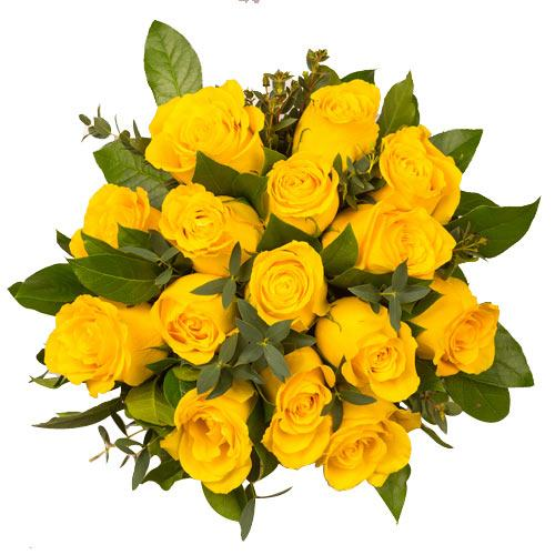 Classic Composition of Fifteen Yellow Roses