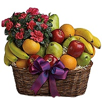 Exquisite Season's Arrangement of Fresh Fruits in a Basket