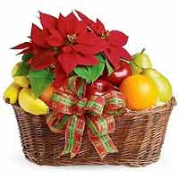 Fruit Basket 4<br>(for Bangkok only)