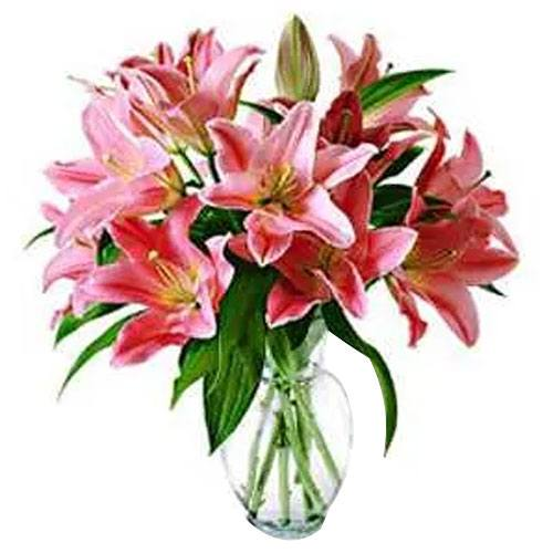 Pink lilies in vase<br>(for Bangkok only)